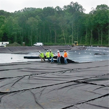 HDPE Geomembrane Sheet for Pond Waterproofing Liner