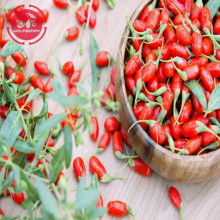 Low Price Free Sample Low pesticide Goji Berries