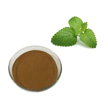melissa officinalis leaf extract powder