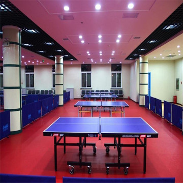 Economic Table Tennis Sports flooring
