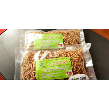 Protein-Rich Dried Mealworms for export
