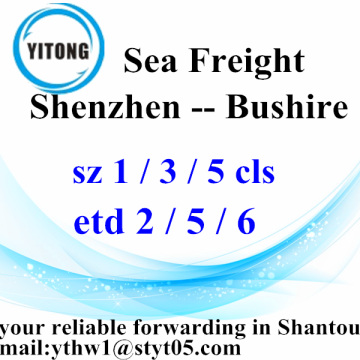 Shenzhen International Freight Delivery to Bushire