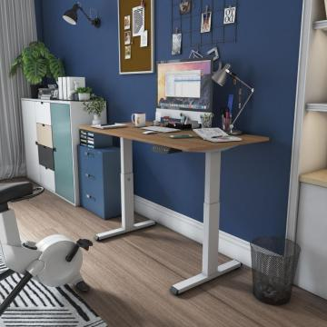 Single Motor Sit Stand Table Office Desks
