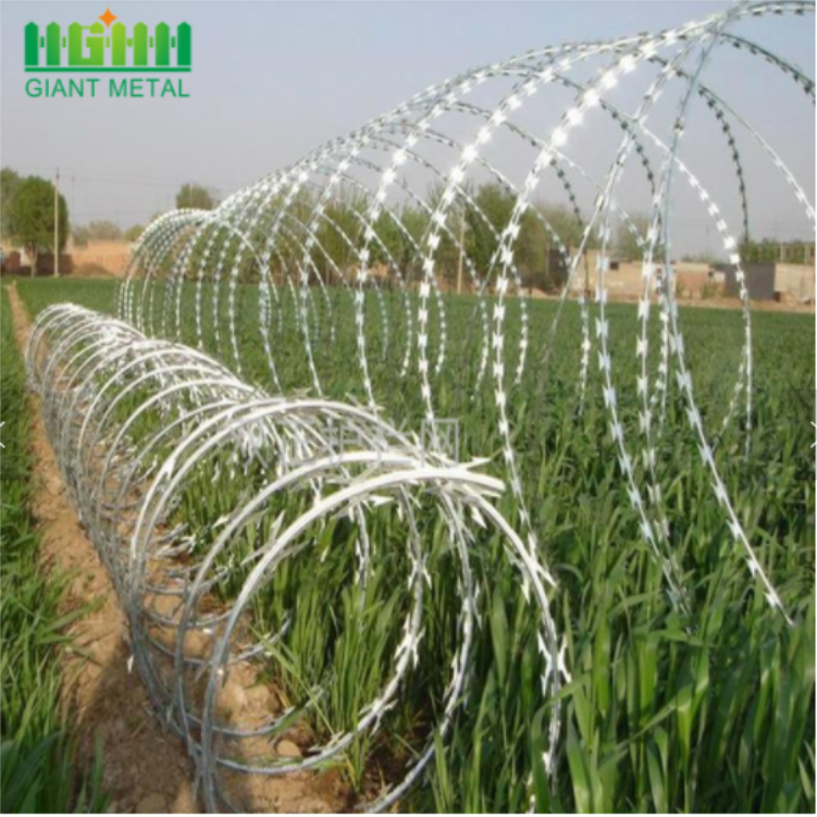 Hot-dipped Galvanized Razor Wire Roll  Mesh Fence