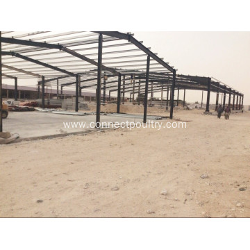 chicken farm in consctruction
