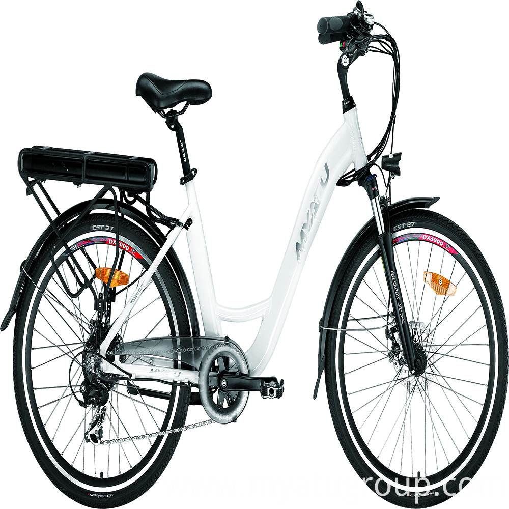 High Quanlity Electric Bicycle