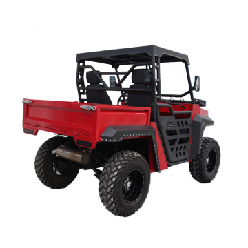 NEW Model 4 wheel UTV 1000cc dune buggy