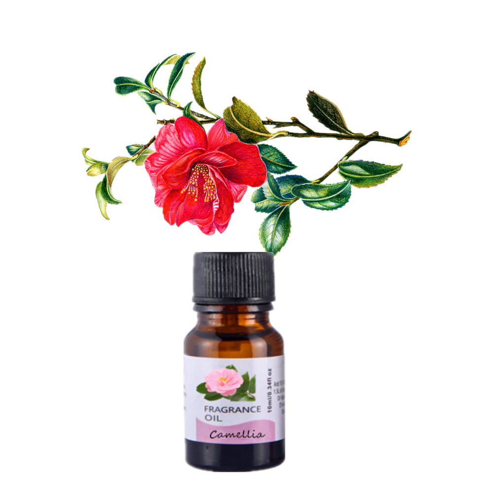 10ml Camellia Fragrance Oil 10ML Diffuser Aroma Essential Oil Longevity flower Rose Peony Orchid Water lilies Winter jasmine