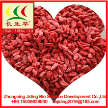 ningxia 2018 Dried wolfberry/goji/gojiberry in bulk