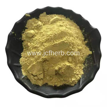 Kaempferol Powder Kaempferia Galanga Extract Powder 20%