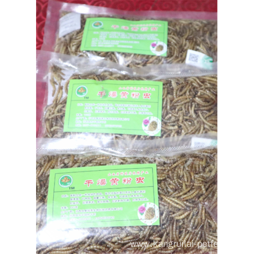 High Protein Freeze Dried Mealwormd Feed