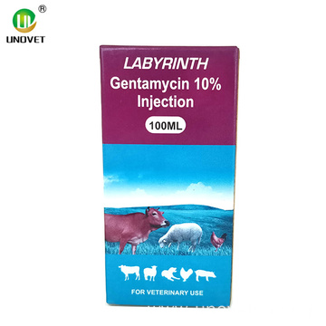 Animal Medicine Gentamicin 10% Injection