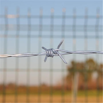 electro galvanized barbed wire fencing for security