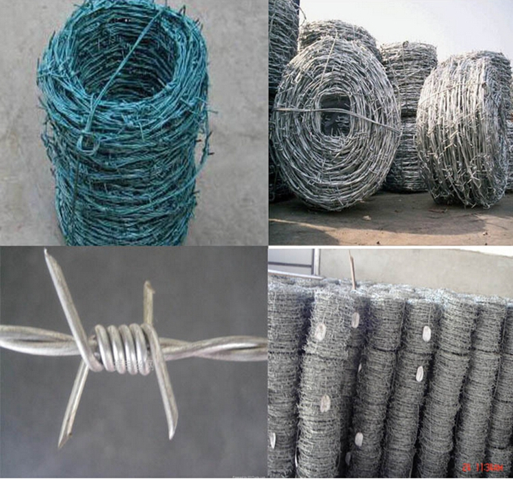 BORBED WIRE21