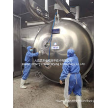 Fish Freeze Drying Equipment