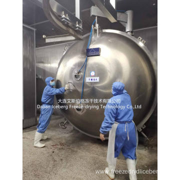 Large Bulk Freeze Dryer Lyophilizer