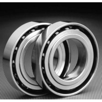 Single Row Deep Groove Ball Bearing (61864)