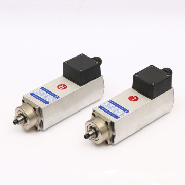 Customized Air Cooled  90W DC Gear Motor
