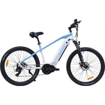 Middle Driven Motor City E-Bike /new best ebike