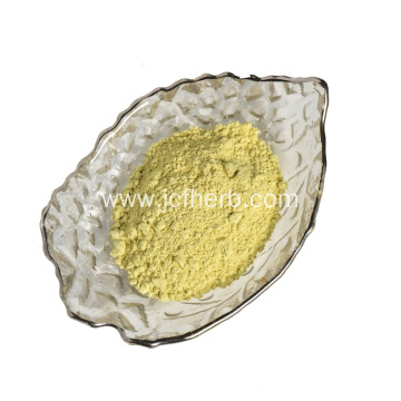 Rutinum Extract Powder Rutin 95% Powder