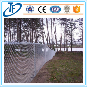 High Quality Chain link netting