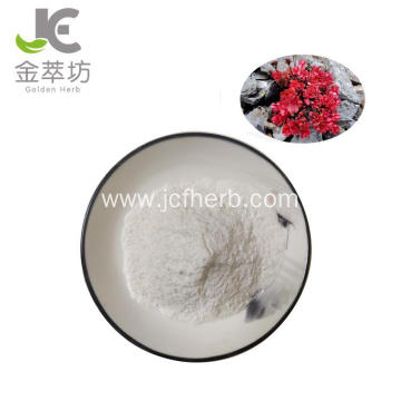 Hot Sale Rhodiola Rosea Extract Powder salidroside 98%