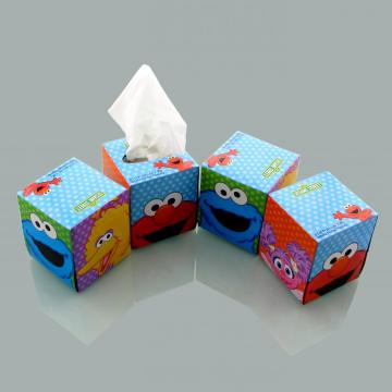 Boutique Facial Tissue