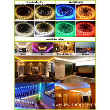 Waterproof Christmas Lamp Dc12v 24v 3014 led strip