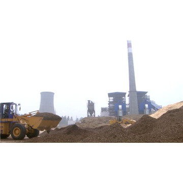 20MW Biomass Power  Steam Turbine