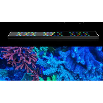 Sunrise/Sunset/Lunar LED Aquarium Light for Reef Coral