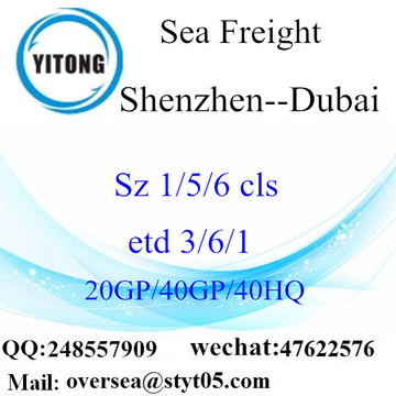 Shenzhen Port Sea Freight Shipping To Duabi