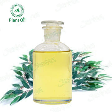 Lemon Eucalyptus Oil Eucalyptus Citriodora Oil