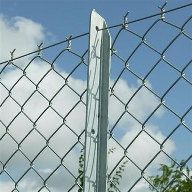 Hot Dipped Galvanized Chain Link Poultry Fence Sale