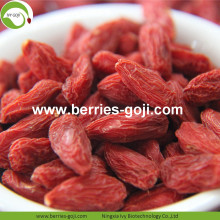 Factory Wholesale Super Food Nutrition Malaysia Goji Berries
