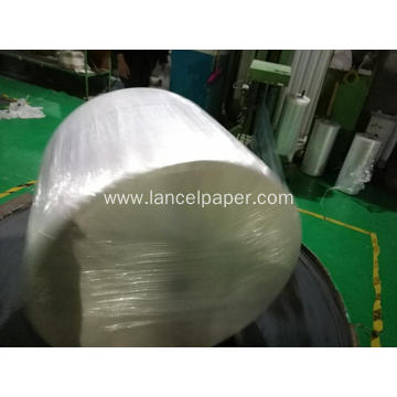 Carrier Tissue for Baby Diaper