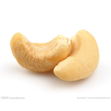 raw cashew nut prices cashew nut w240