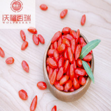 Goji berries can prevent visual degeneration
