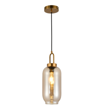 Unique indoor glass hanging light
