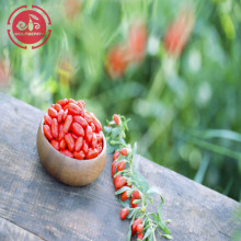 Certified Wholesale Top Grade Low pesticide Goji Berries