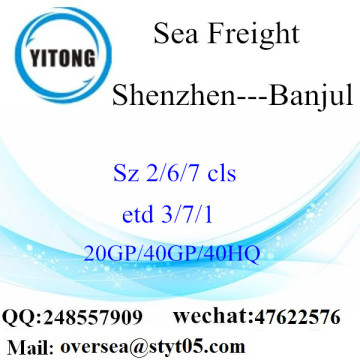 Shenzhen Port Sea Freight Shipping To Banjul
