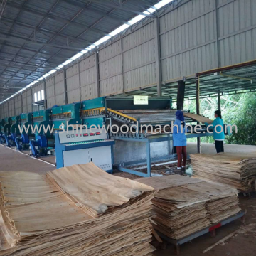 Roller Veneer Drying Machine for Plywood Production