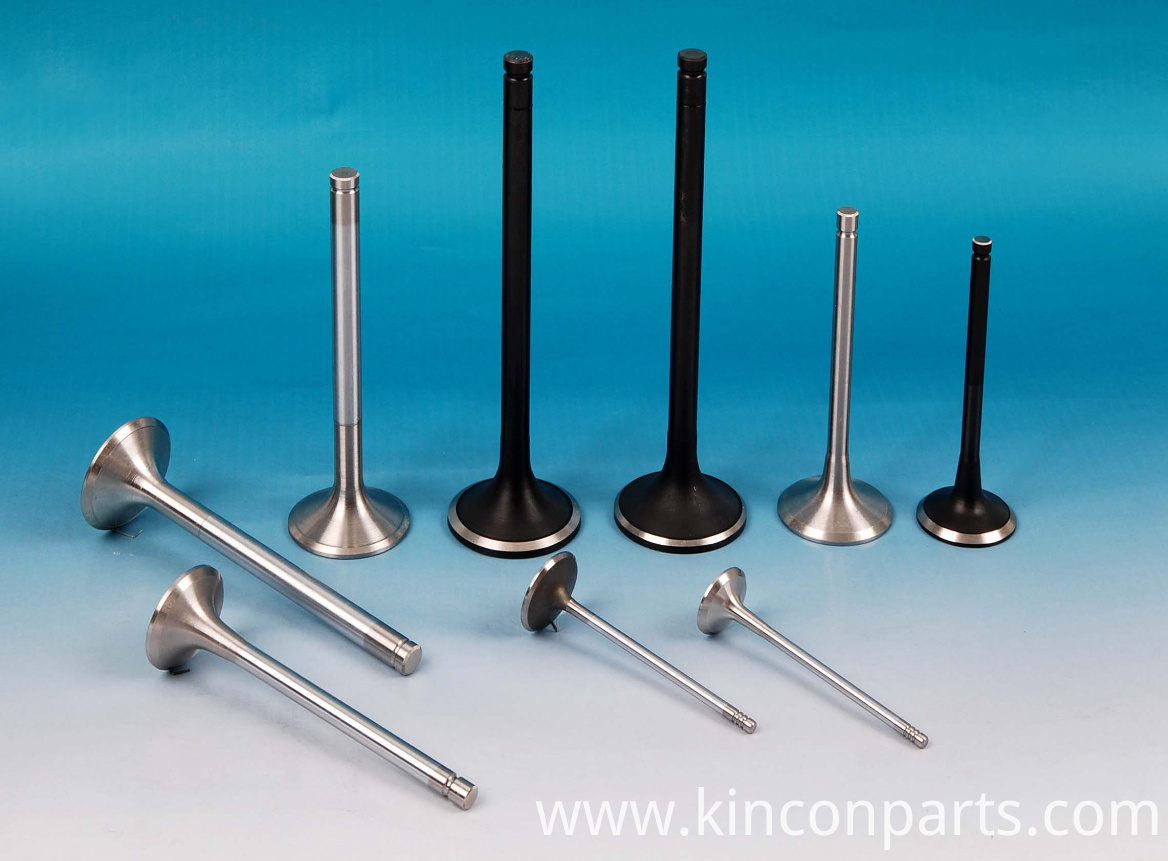 Engine Valves YN4102QBZ