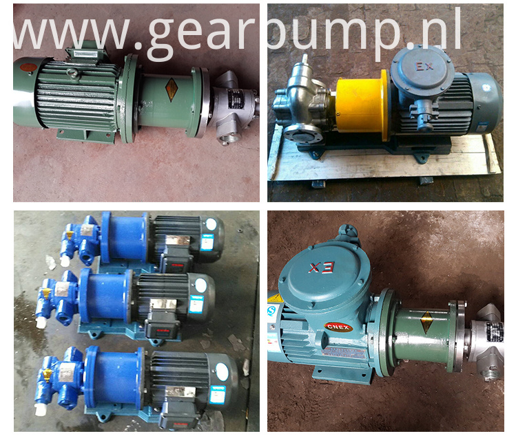 Magnetic Drive Gear Oil Pump