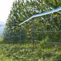Garden Uv Stabilized Stretched Plastic Fence