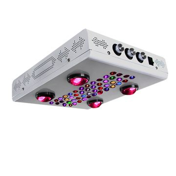 600W Dimmable LED Grow Light for Vge / Bloom