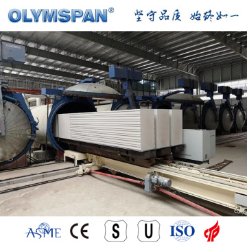 ASME standard sand lime block machinery