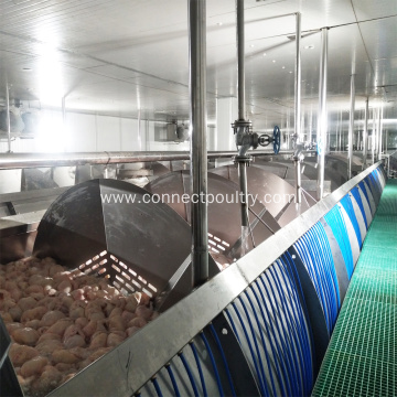 screw pre-chilling machinery of chicken slaughtering machine