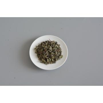 Organic Health Good Quality Chinese Green Op Tea