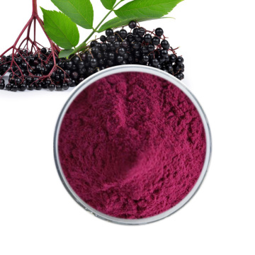 Organic Black elderberry extract powder