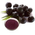 Best Acai berry juice extract with more benefis
